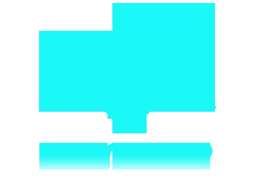 Simultaneous Network Protocol